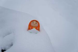 雪 in2014