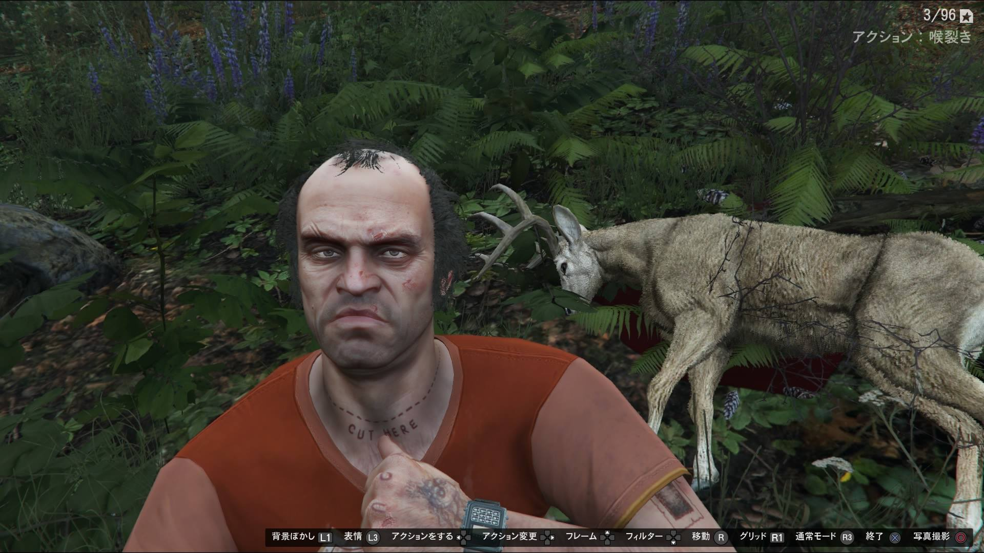 トレバーさん 鹿ゲット